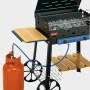 Particolare 2 Barbecue Roccia Gas Lux